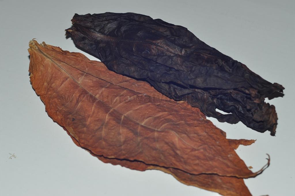 pipe tobacco making